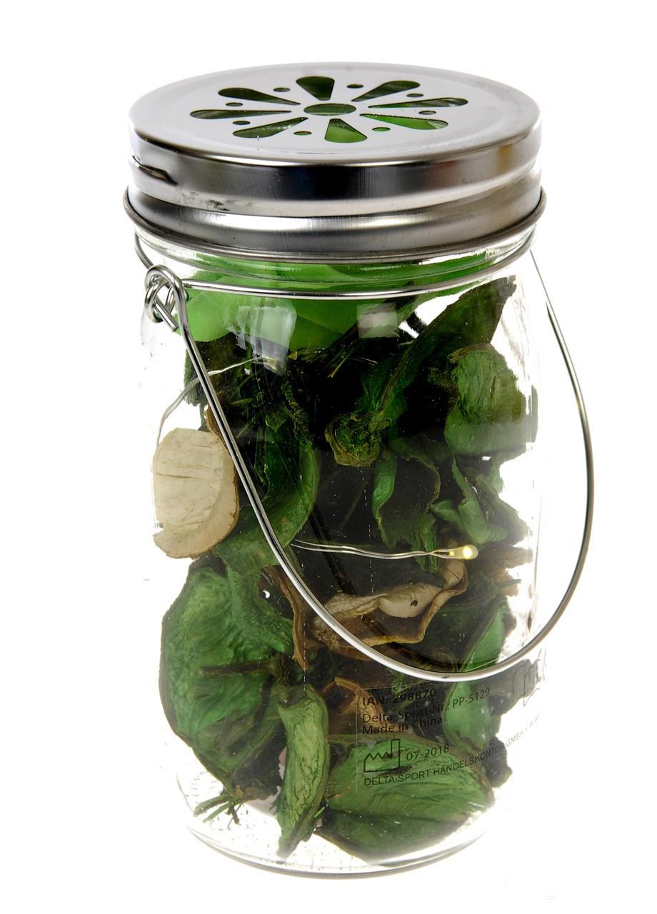 Декоративный LED светильник с сухоцветами Melinera