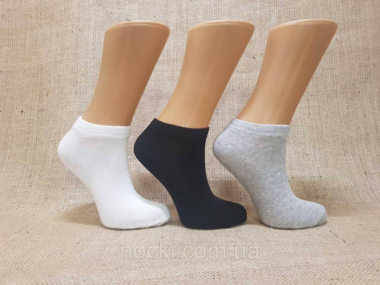 Жіночі короткі шкарпетки з бавовни класика SL КЛ 36-40 асорті білий,сірий меланж,чорний
