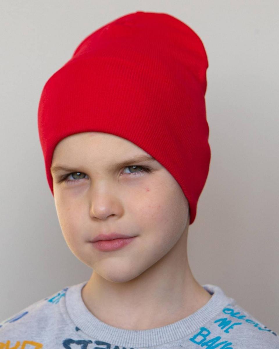 Шапка c відворотом на весну-осінь для хлопчика оптом - Артикул 2840