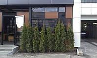 Тентовка Прозрачными шторами летней площадки  Кафе, фото 1