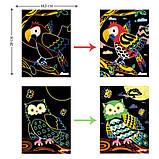 Набір для творчості, скретч-арт AVENIR Чарівні птахи, 4 скретч-листа, фото 4