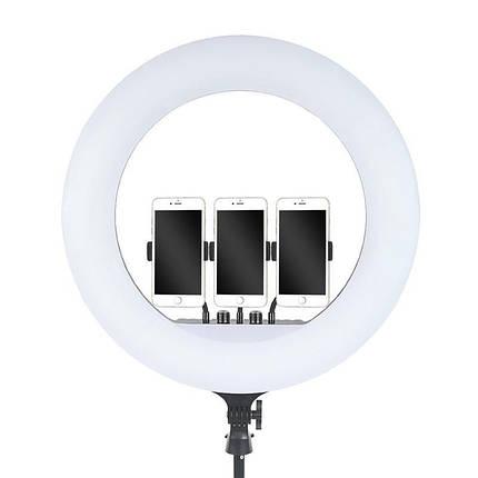 Кільцева LED лампа RL-21 55 см з 3-ма кріпленнями, штативом, пультом і сумкою, фото 2