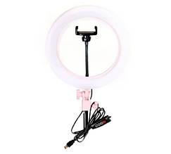 Кольцевая LED лампа Ra-95 + зеркало (26см)   Кольцевой свет   Световая лампа кольцо