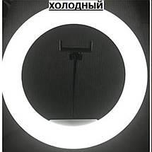 """Кільцева Led лампа HQ18 18"""", фото 2"""