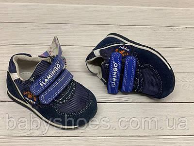 Кожаные кроссовки для мальчика Flamingo р.19.22. модель 0068