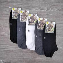 Шкарпетки чоловічі сітка, короткі, SPORT, р. 40-45, асорті 30031045