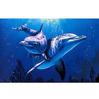 Картина по номерам рисование Diy Дельфины 20х30см набор для росписи, краски, кисти, холст