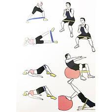 Резинки для фитнеса Mini Loop Bands Набор из 5 резинок + чехол, фото 3