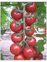 Семена томата черри Арома F1 100 шт