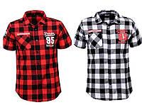 Модные детские рубашки для мальчика Glo-story summer! 134-164 р., фото 1
