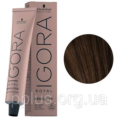 Фарба для волосся 4-50 Schwarzkopf Igora Royal Absolutes Середньо-коричневий, золотисто-натур. 60 мл, фото 2