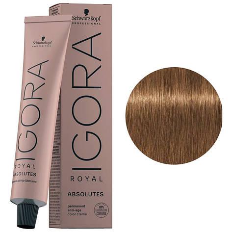 Фарба для волосся 7-450 Schwarzkopf Igora Royal Absolutes Середньо-русявий бежевий золотий 60 мл, фото 2