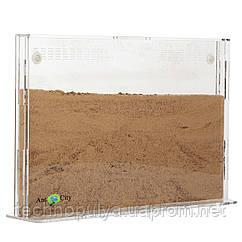 Песчаная муравьиная ферма AntCity Эко Акрил комплект для новичка Прозрачный (hub_Mbrp47987)