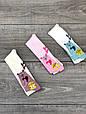 Колготи для немовлят бавовна KBS з Ведмедики для дівчат 0р 6 шт в уп мікс з 3х кольорів, фото 6