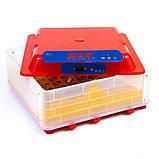 Інкубатор автоматичний Tehno MS, MS-56, фото 2