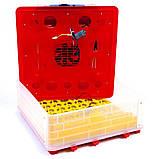 Інкубатор автоматичний Tehno MS, MS-56, фото 4
