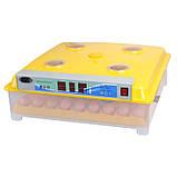 Інкубатор автоматичний Tehno MS, MS-63/252, фото 2