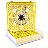 Інкубатор автоматичний Tehno MS, MS-63/252, фото 3