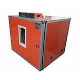 Професійний автоматичний інкубатор Tehno MS, MS-392, фото 2