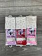 Колготы для младенцев хлопок KBS Hello Kitty Хеллоу Китти с кошками для девочек 6 шт в уп микс из 3х кол, фото 5
