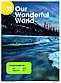Английский язык / Wonderful World. Student's+Workbook, Учебник+Тетрадь (комплект), 1 / NGL, фото 5