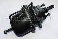 Камера тормозная задняя(энергоаккумулятор) (613 EII,613 EIII) WABCO