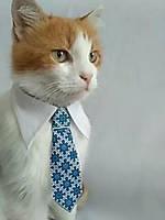 Галстук с воротничком для котика или собачки  в ассортименте