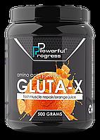 Глютамін Gluta-X Powerful Progress 500 г, фото 2