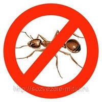 Уничтожение муравьев, уничтожение  домашних муравьев, уничтожение муравьев в доме