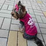 Майка для собак Принцесса М Розовая, фото 5