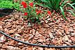 Капельница садовая Presto-PS компенсированная на 4 л/ч (7752), фото 2