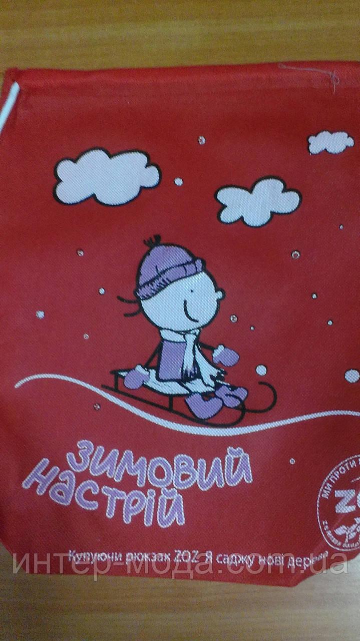 Еко - рюкзак Зимовий настрій