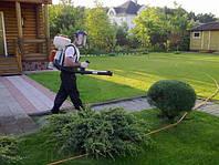 Обработка садовых участков от вредителей и  насекомых
