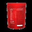 Гейнер 2600 г MASS 100 Whey Activator AB PRO шоколад, фото 2