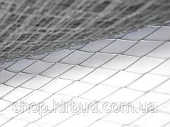 Сітка штукатурна (просічно-витяжна) 1*10м чарунок 17х40х0,7