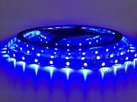 Светодиодная лента синяя 3528\60 led