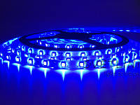 Светодиодная герметичная лента синий 3528\60 led