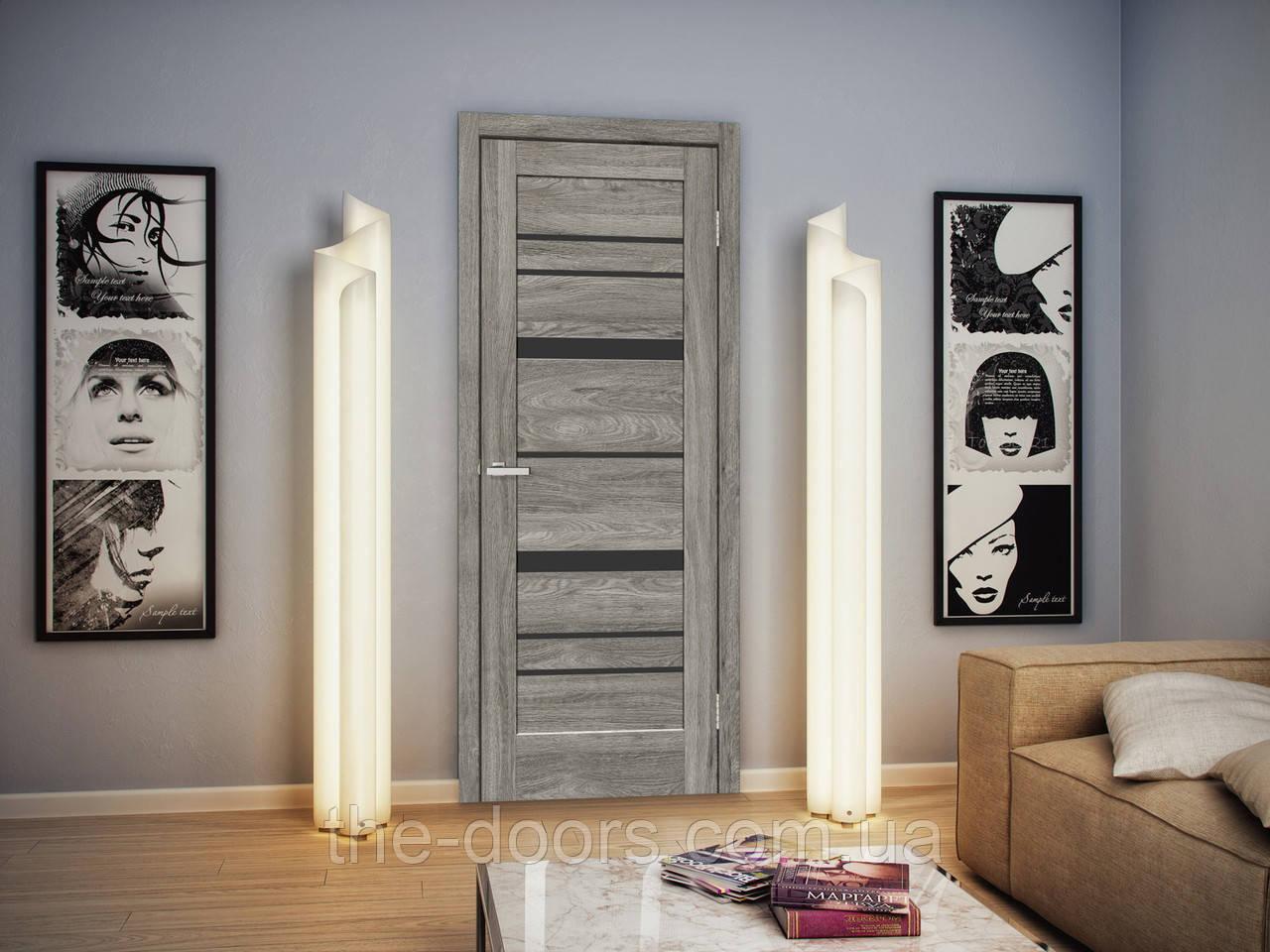 Двери межкомнатные ОмиС Рино 02 стекло черное