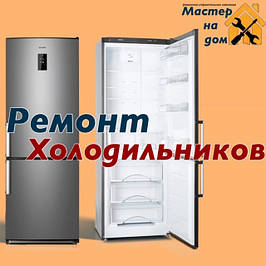 Ремонт холодильников в Вишневом на дому