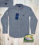 Рубашка ARMANI серая для мальчиков, фото 4