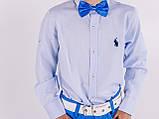Рубашка для мальчика Polo голубая, фото 2