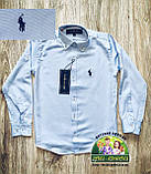 Рубашка для мальчика Polo голубая, фото 7