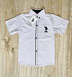 Рубашка белая Polo для мальчика 1-4 лет, фото 5