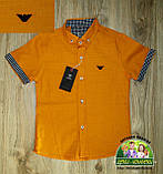 Оранжевая рубашка Armani с коротким рукавом для мальчика 3-4 года, фото 2