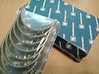 Вкладыши коренные Skoda Octavia Tour (1U2/1U5), Fabia 1-й ремонт (размер 0.25), фото 1