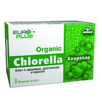 Хлорелла (Chlorella) ключ к здоровью, долголетию и красоте