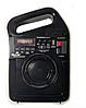 Портативний радіоприймач Golon RX-498LS, Power Bank, usb, sd, сонячна батарея, фото 2