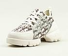Кросівки жіночі текстильні Stilli 8189-1 бежеві, фото 3