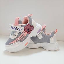Кросівки для дівчинки Сірий Tom.m р. 22 (13,5 см), 23 (14 см), 24 (14,7 см), 26 (16 см)