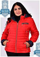 Демисезонная женская куртка жилет большие размеры 42-70